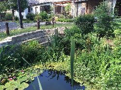 Az ŐSHAZA Vendégház romantikus kerti ösvényei, növényei segítik az ellazulást, a feltöltődést.