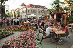 Hévíz tavasztól, őszig virágzó színpompával is vidámmá teszi a vendégek belvárosi sétáit, a kávézók teraszait. www.heviz.hu